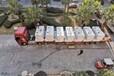 濕式環保拋光打磨機質保一年包送貨