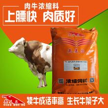 犊牛小牛肉牛高档浓缩饲料,试试英美尔30%肉牛浓缩料!