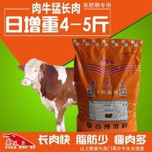 瘦牛黄牛安格斯牛育肥催肥饲料,试试英美尔5%肉牛预混料-肉牛猛长肉!