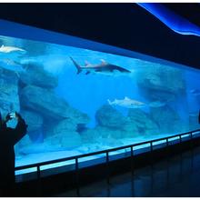 洋清水族-广州定制海鲜池工程-广州定制海鲜池图片