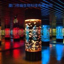 广州海鲜池免费设计定做海南大型亚克力鱼缸订做深圳海水鱼缸设计订做图片