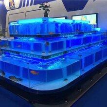 大型亚克力鱼缸定做-广州洋清海鲜池制冷工程有限公司图片