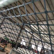 廠家直銷抗拉雙向鋼塑土工格柵路基增強加筋擋土墻用鋼塑土工格柵圖片