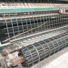 厂家生产直售现货钢塑土工格栅路基加固路基增强专用钢塑格栅图片