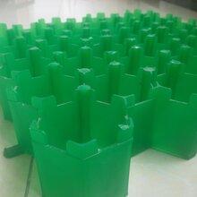 厂家直销HDPE植草格停车场小区绿化植草格图片