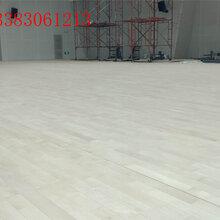 体育东森游戏主管木地板篮球馆木地板羽毛球馆实木地板室内舞台枫桦木地板图片