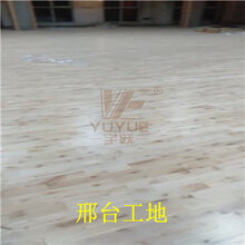 24mm厚枫木运动地板体育运动木地板图片