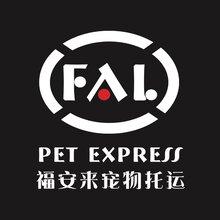 人性、安全、便捷-兰州福安来专业宠物托运图片