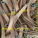 礦用防爆銅編織軟連接封閉母線變壓器安裝銅編織帶