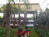 玻璃日光温室新型日光温室大棚建造日光温室的结构特点