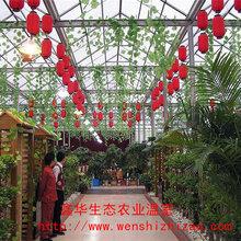 阳光房温室生态餐厅玻璃大棚设计安装山东鑫华专业建造商