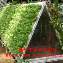 无土栽培水果蔬菜管道种植不锈钢支架草莓种植架现货批发图片