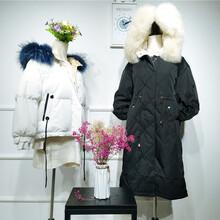 拉利蘭特羽折扣店正品貨源品牌女裝庫存圖片
