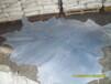 供应韩国进口蓝湿牛皮三层