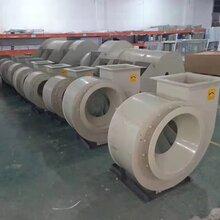 厂家提供pp材质环保型pp风机防腐风机塑料风机离心风机