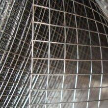 林瑞电焊网网片养殖电焊网镀锌电焊网浸塑电焊网可定做
