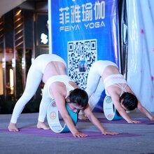 东莞企石哈他瑜伽培训浅谈哪些人是不能练习瑜伽的?
