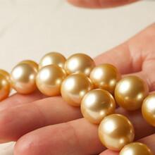 珍珠现金交易能卖出去吗图片