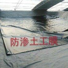 土工膜复合土工膜耐腐蚀耐酸碱防渗隔离效果很好是新型的土工材料图片