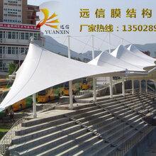 学校运动场看台膜结构风雨球场膜结构制作安装