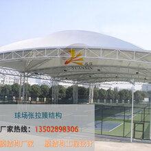 东莞风雨球场张拉膜体育场膜结构球场0设计