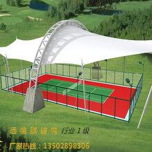 承建赛马场看台膜结构网球场膜结构户外篮球场球场膜结构