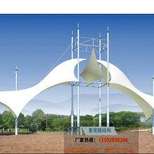 工期短、性价比高深圳膜结构供应商休闲遮阳张拉膜雨棚膜结构