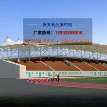 专供南昌体育场看台张拉膜主席台看台PTFE膜结构遮阳篷厂家