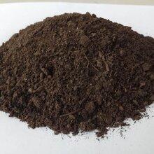 北京工程绿化专用有机肥北京哪里卖发酵羊粪牛粪有机肥的图片