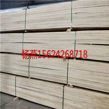 免熏蒸木方價格批發免熏蒸木方廠家圖片