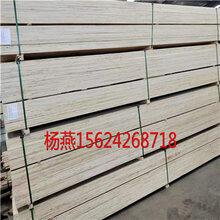 包裝用免熏蒸木方-免熏蒸木方LVL層積材,車展地臺板圖片