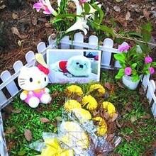 杭州貓貓狗狗寵物動物尸體無公害火化殯葬服務圖片