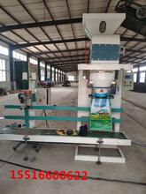 石灰粉包装秤灌装机全国供应图片