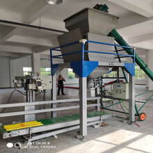安徽粮食定量包装机谷物灌包机厂家直销图片