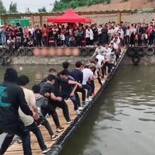 网红桥厂家/摇摆桥/山东蓝洞图片