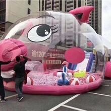 高大上粉萌猪猪岛乐园租赁猪猪岛乐园图片