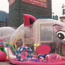 猪猪岛乐园,粉萌猪猪岛