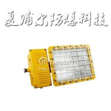 内蒙古290W防爆灯LED平台灯图片