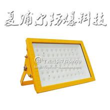 電廠專用LED防爆燈100W防爆LED燈廠家圖片