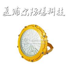 油田90W防爆灯LED荧光灯图片