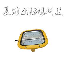 40W加工廠投光燈LED防爆泛光燈圖片