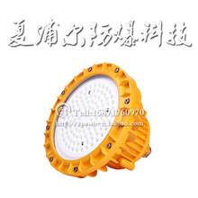 鋼鐵廠LED防爆燈50W廠用防爆燈圖片