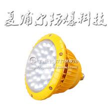 法蘭式50W防爆燈LED防爆泛光燈圖片