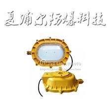 BFC8120led防爆燈30W應急防爆燈圖片