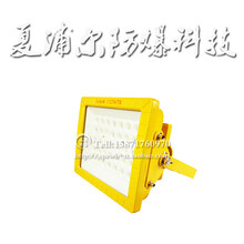 加氣站LED防爆燈30Wled防爆投光燈圖片