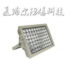 BFC8120_30W防爆灯LED防爆投光灯图片