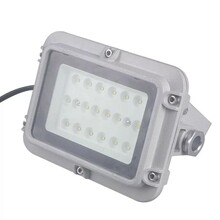 晉城_100W防爆燈LED平臺燈圖片