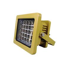 BHD52系列_30W防爆燈內場燈圖片