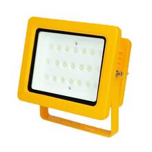液化站100W防爆灯LED防爆灯多少钱图片