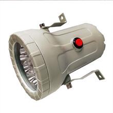 BXE8400_40W防爆灯LED三防灯图片